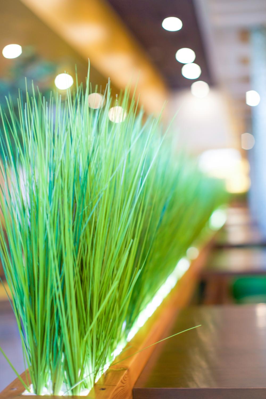 Restaurant Green Decor